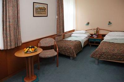 Available double room in Hotel Spa Heviz - Hotel Spa*** Heviz - discount Spa Thermal Hotel in the near of Thermal Lake Heviz